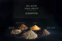 Прикормка Carpio Black Halibut Method Mix 1kg