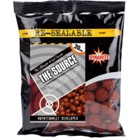Бойлы Dynamite Baits The Source Boilie 350g 20 mm